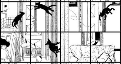 Resenha – Vida de Gato
